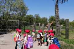 12.-Wycieczka-klasy-1a-do-Zoo-w-Opolu