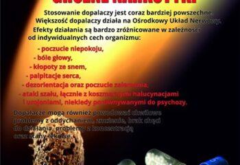 Ulotka ŚPWIS - Dopalacze Wypalacze groźne narkotyki (awers)